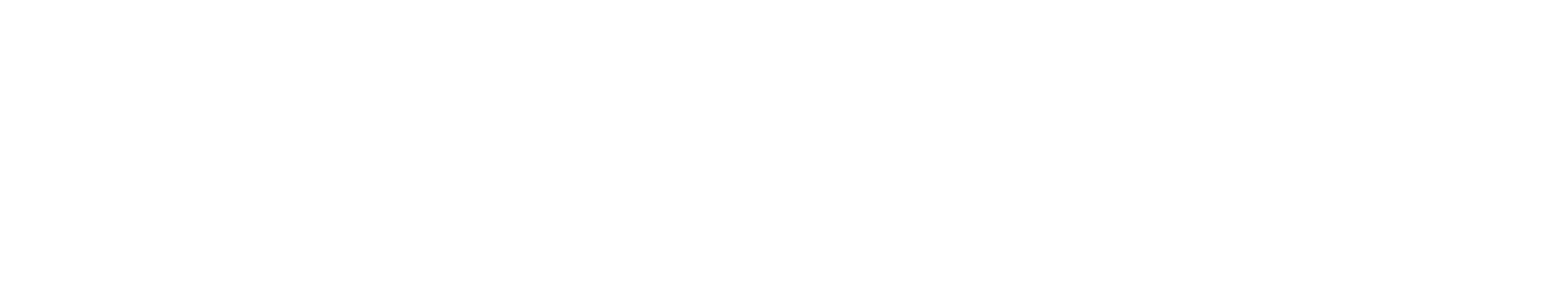 N1 Plastic Surgery